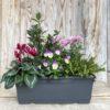 JARDINIERE DE 5 PLANTES jardinière de 40 cm