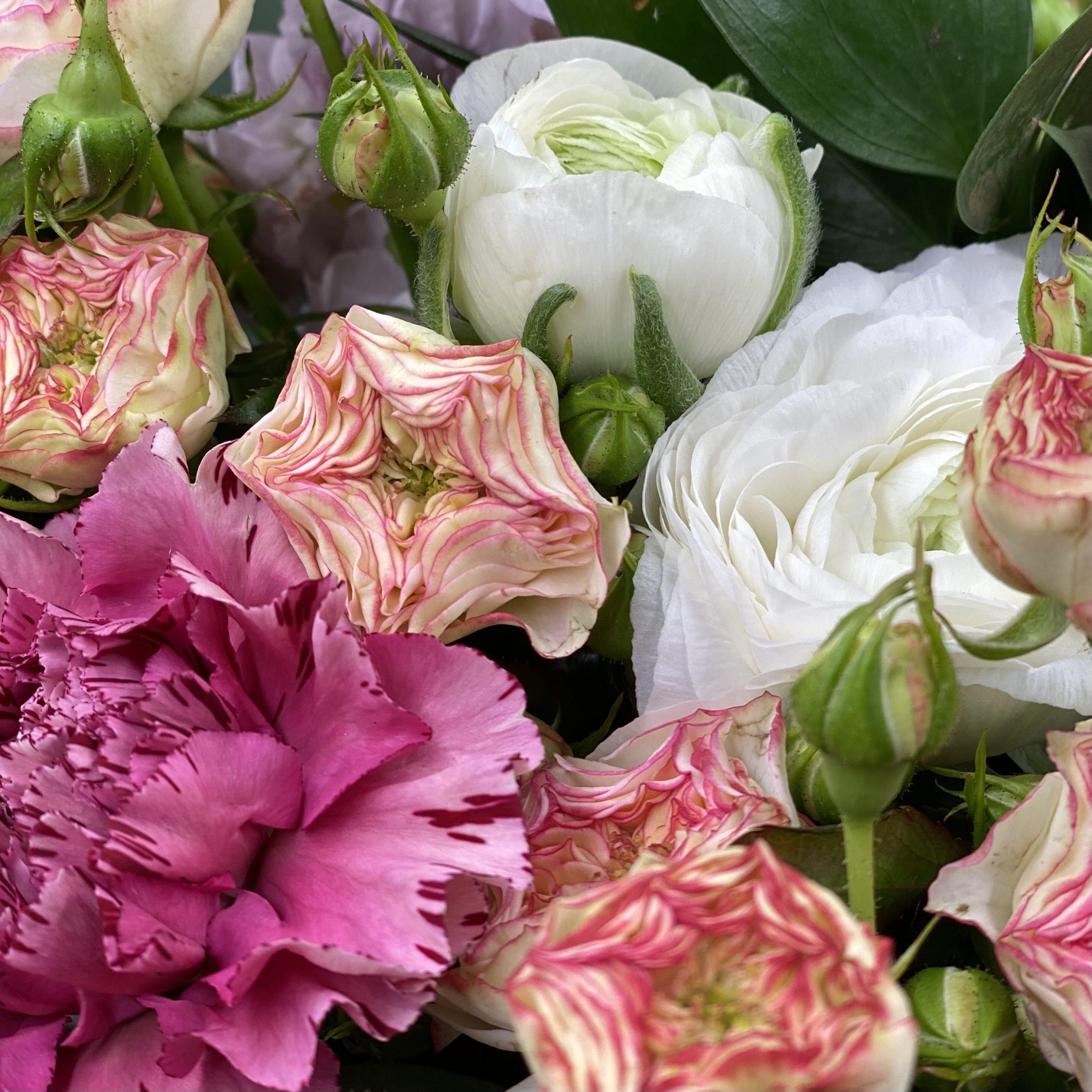 Surprise et fleurs de Saison